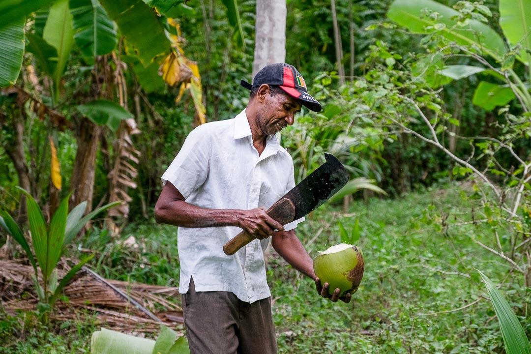 Jetwing Kaduruketha hotel Sri Lanka natuur kokosnoot