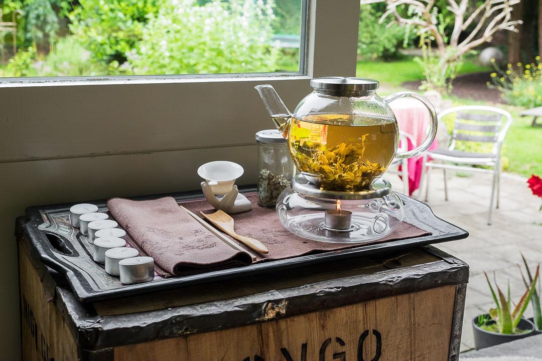 ann vansteenkiste curiosithee tea