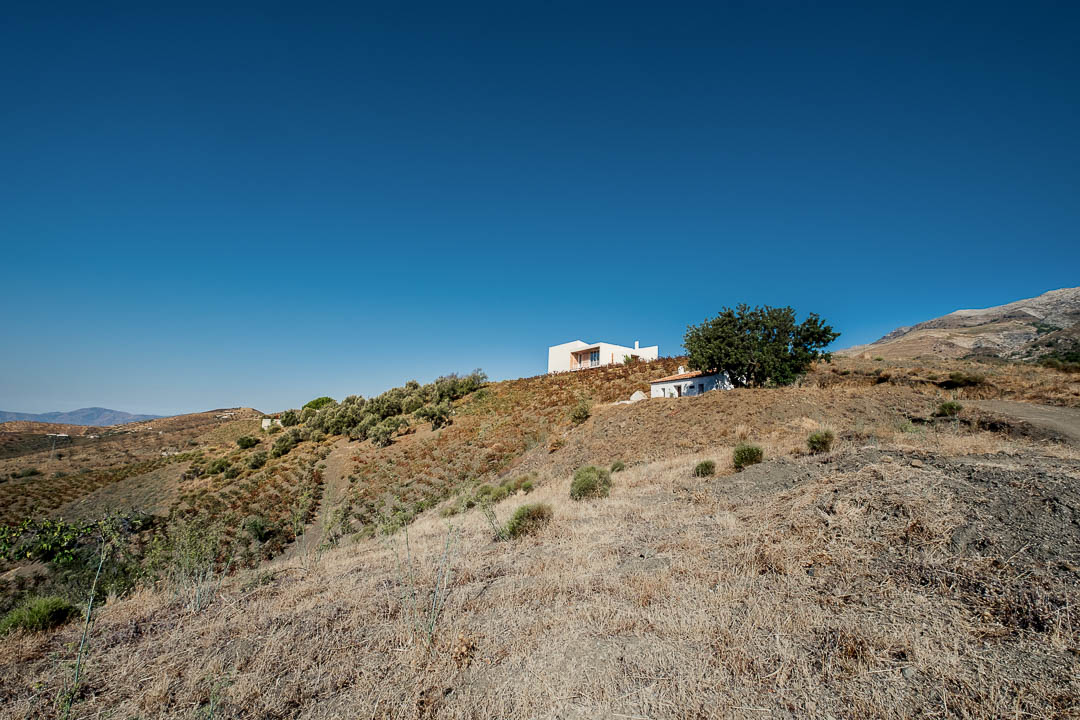 sedella wines andalucia location