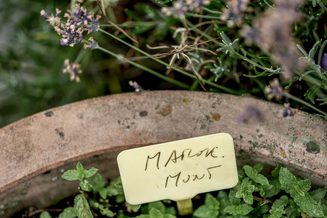 Garden herbs with name tag. Mint. Close-up. Auberge De Herborist by Hungry for More.