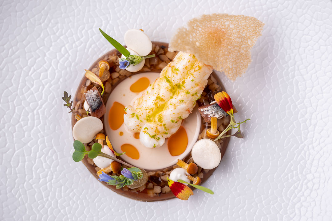 """Werneckhof Munich by Hungry for More. Langoustine, Shiitake """"Sülze"""", oyster & anchovies. Top view."""