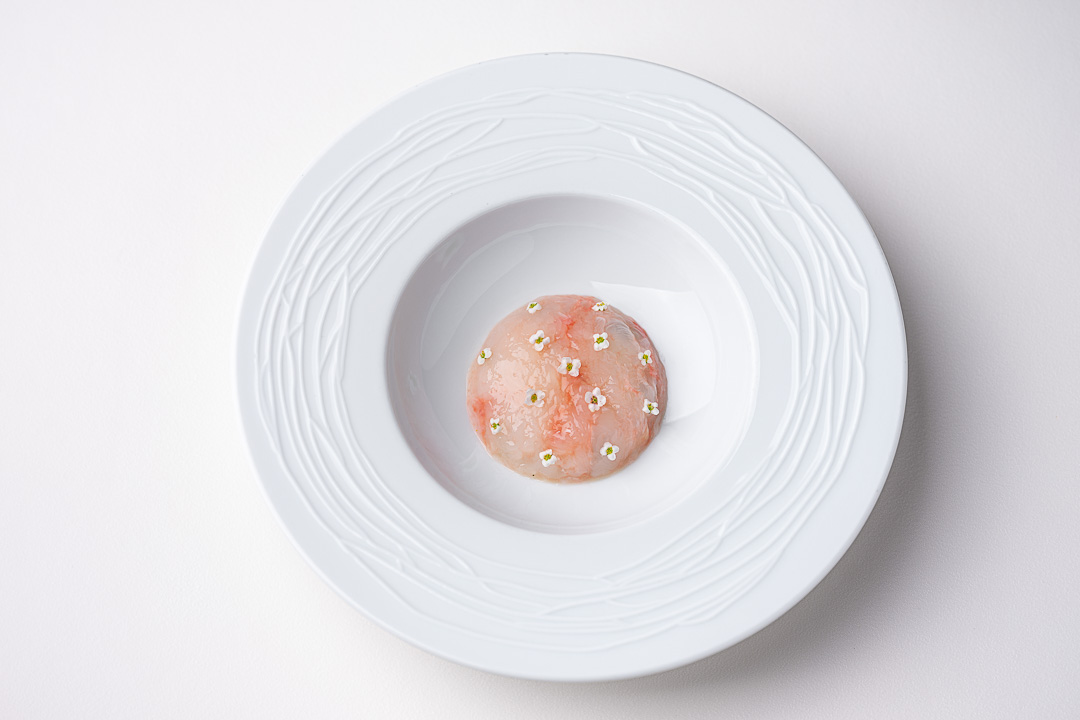 Vinkeles by Hungry for More. Top shot of the langoustine dish by chefs Dennis & Jurgen.