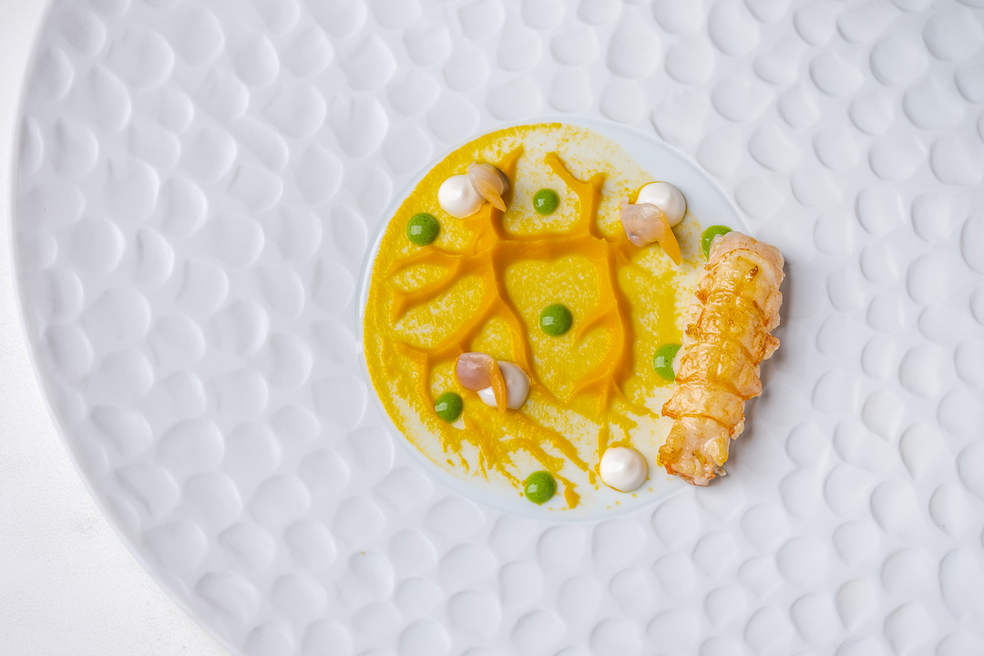 Gaytan by Hungry for More. Overall picture of the langoustine.