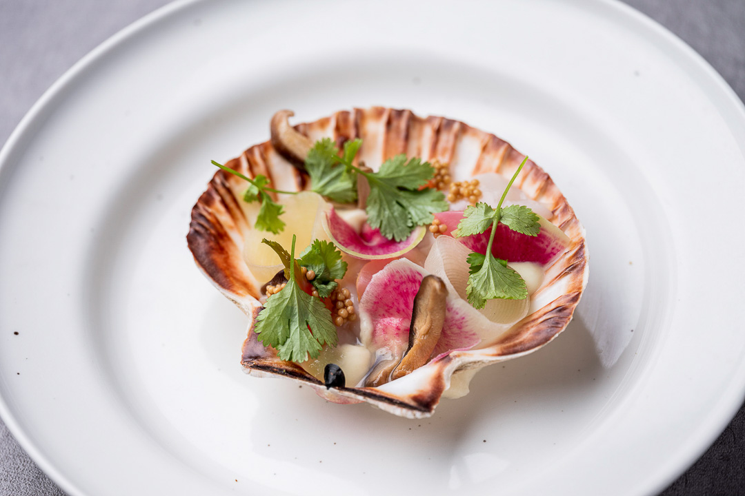 Coquilles by L'épicerie du cirque - Hungry For More